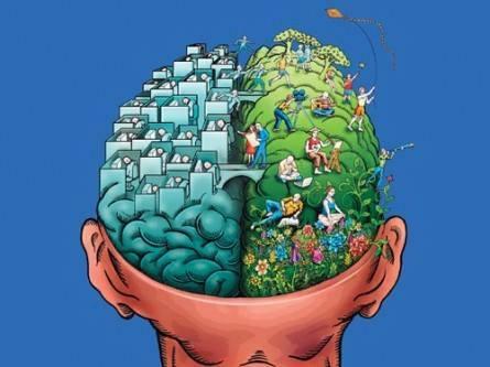 Chuyện hai bán cầu não